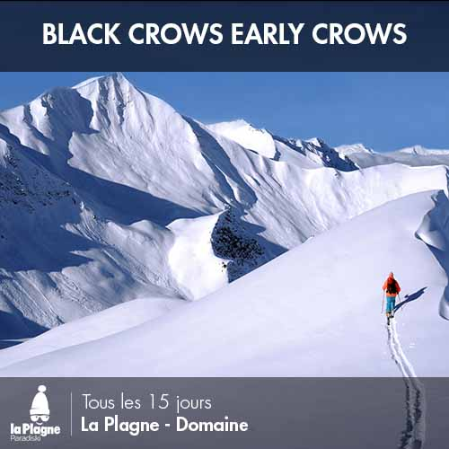 bc-early-crows